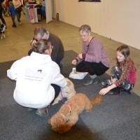 Lenamaria berättar om sina hundar och vår verksamhet